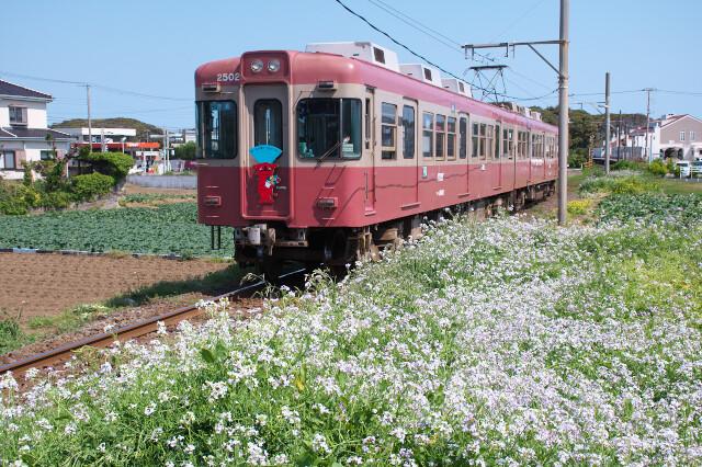 銚子電鉄2000形20200429犬吠-外川3