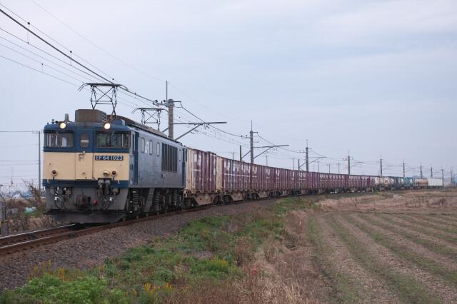 DSC_1350