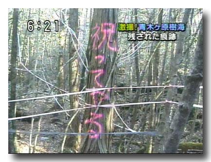 【総合】ドラゴンクエストXオンライン part7678【DQ10】©2ch.netYouTube動画>4本 ->画像>192枚