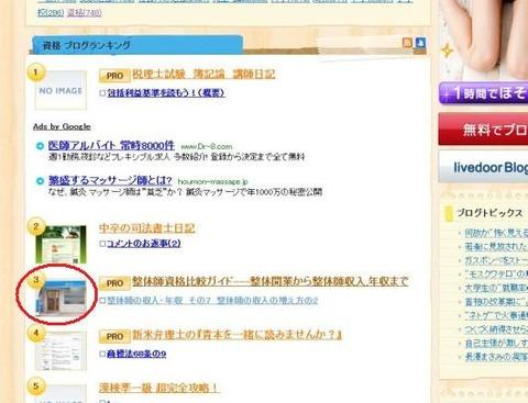 20110125blogranking3i