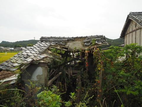 karasuuri20093015