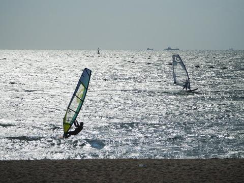 surfing15102821