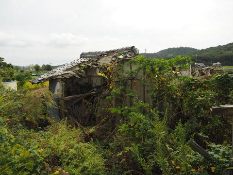 karasuuri20093026