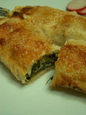 vegetable cannelloni 2
