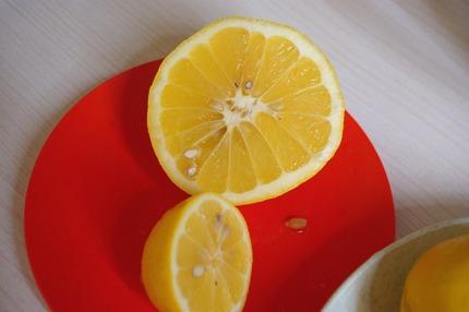2013.04.02 cut lemons