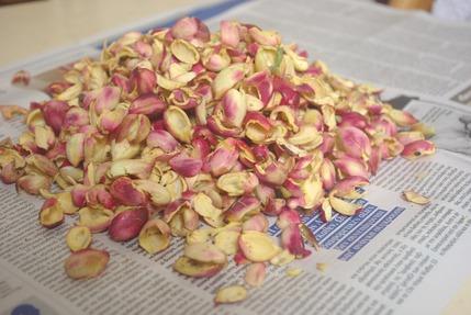 2016.09.04 pistachios3