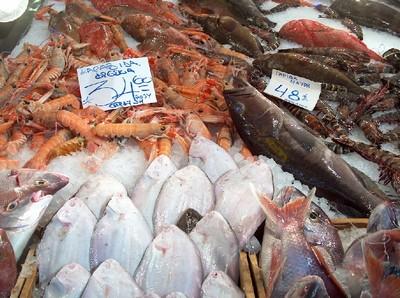 2008.03.04 fish market7
