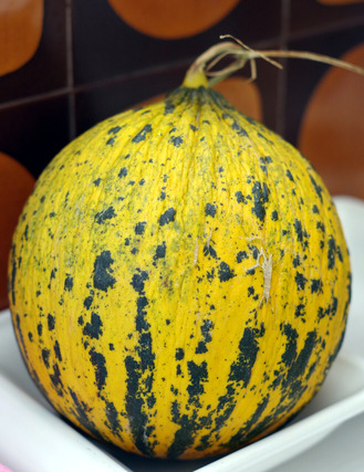 2020.10.13 melon