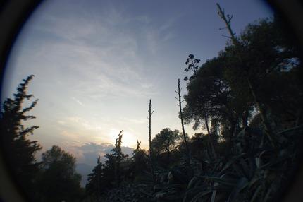2011.06.04a