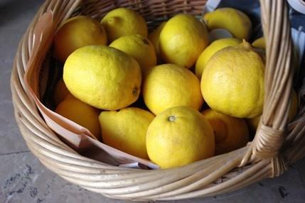 2010.03.07 lemons