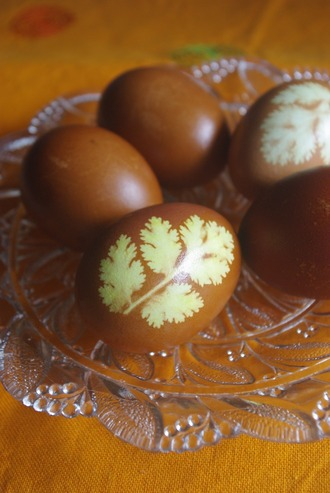 2015.03.24 eggs