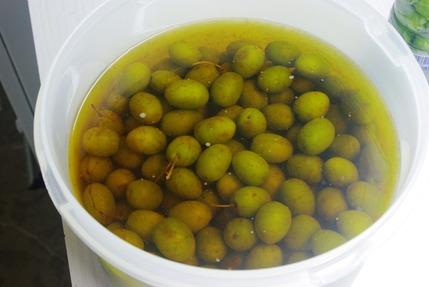 2017.10.11 olives1