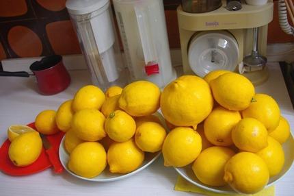 2013.04.02 lemons