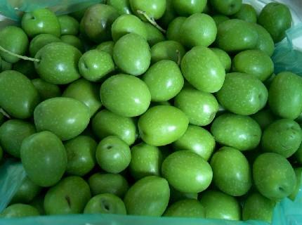 green olives1