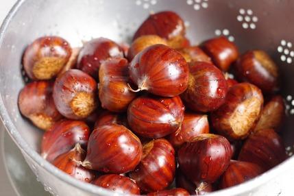 2020.10.22 chestnuts