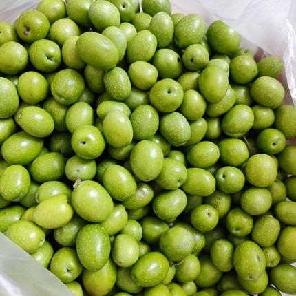 2021.10.05 olives1