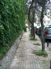 2008.12.02 pavement