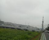 5b5101fe.jpg