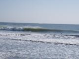 菖蒲田浜の波