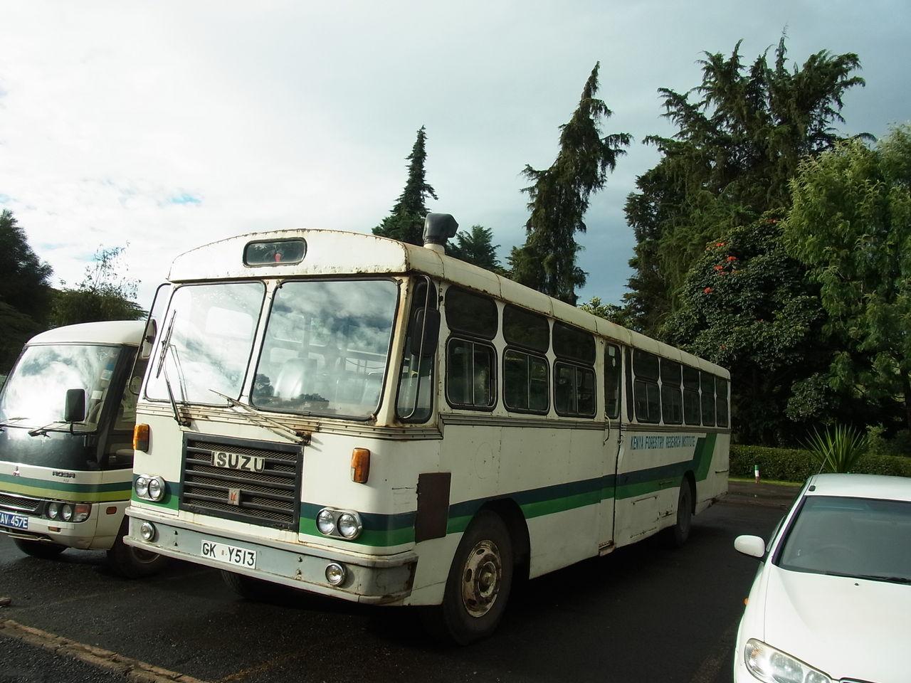 RIMG0287