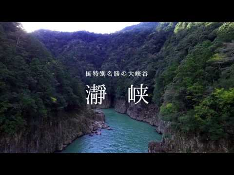 Airbnb「和歌山は日本の精神文化の原点。2019年に訪れるべき観光地」