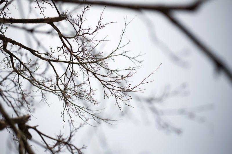 【悲報】昨日「20℃!」今日「10℃!」 寒暖差激しすぎて病弱たちの自律神経が終わる・・・この時期地獄ゾ