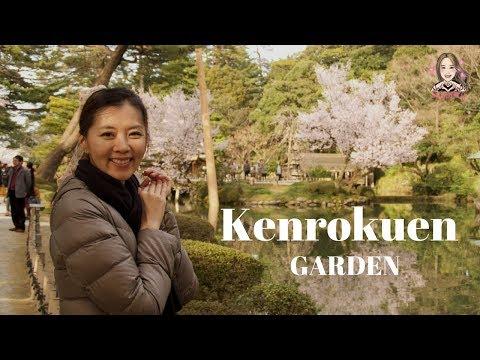 【金沢】あの兼六園が無料開園 ライトアップも実施 知事「花見の時期くらいは」  ※ローカルニュースです