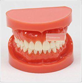 なんで「歯列矯正」が保険適用外なの? 自己満じゃないだろ生活に必要な外科処置じゃん