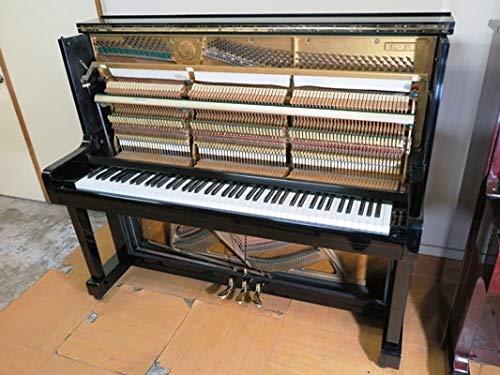 【!?】東大生「東大生はピアノひける人がめちゃくちゃ多いんですよ」←これさぁ・・・