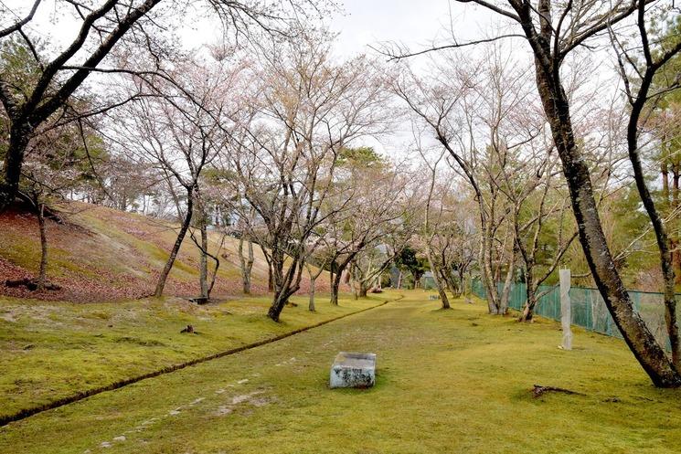 かみなり山20210325b