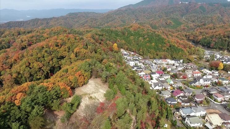 かみなり山