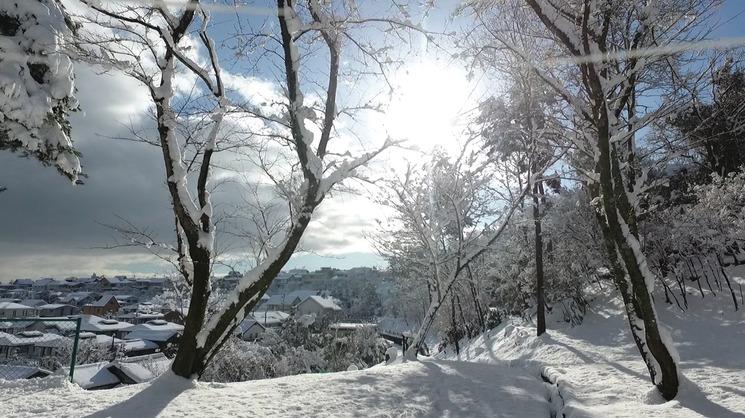 雪のかみなり山から