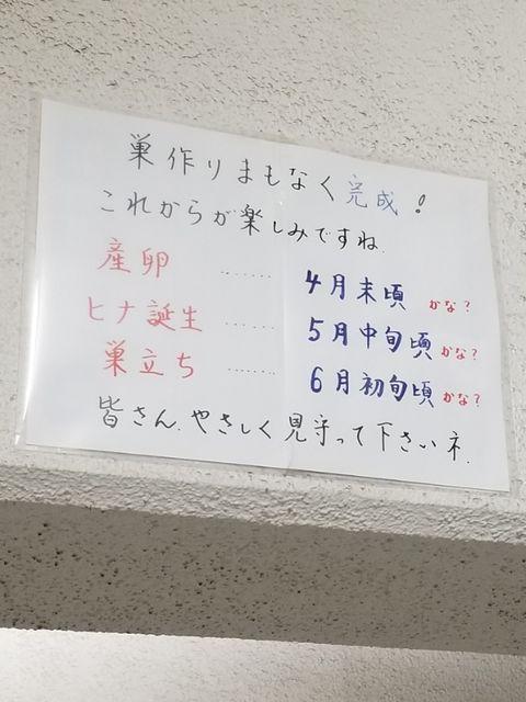 20190505_214022
