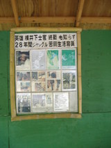 横井洞穴 yokoi's cave7