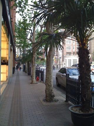 花園飯店裏の長楽路の歩道