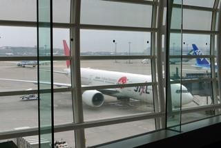 東京羽田空港国際線発、上海・虹橋行きの日本航空「JL081」便の機内食