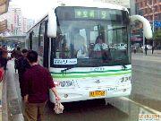 上海のバス