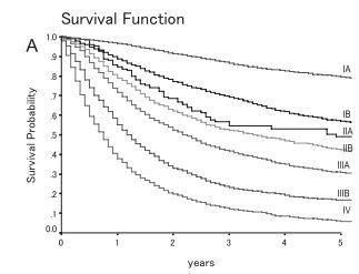 非小細胞肺癌-5年生存率曲線