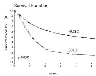 小細胞肺癌vs非小細胞肺癌