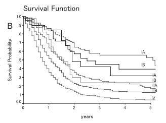 小細胞肺癌-5年生存率曲線