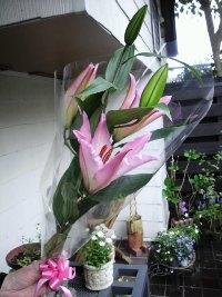 H220422花(200)