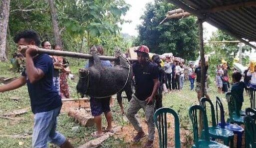 お供え物の豚を運ぶ親族