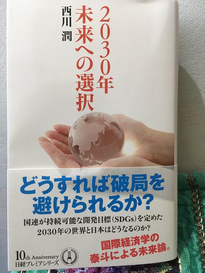 西川潤本 SDGsカバー