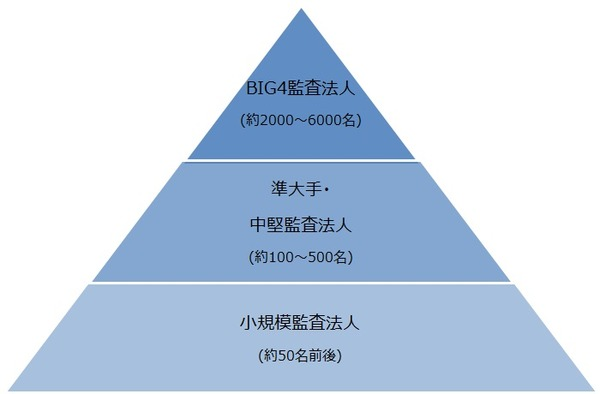 監査法人業界の概要と採用市場について