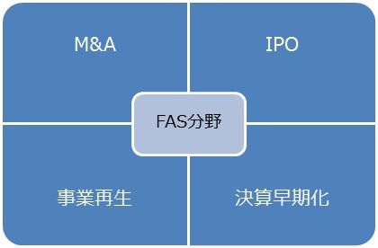 【税理士法人内で行うFAS業務の代表例】