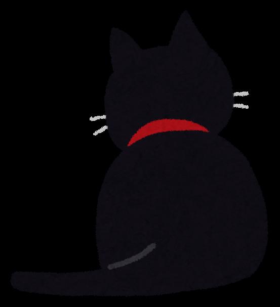 黒猫が写真映えしないと言っている人はこれをみろ!!!!