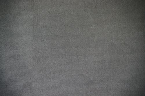 α900(望遠端,開放)