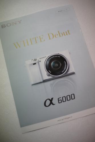 α6000(ILCE-6000)にホワイト(白)が追加