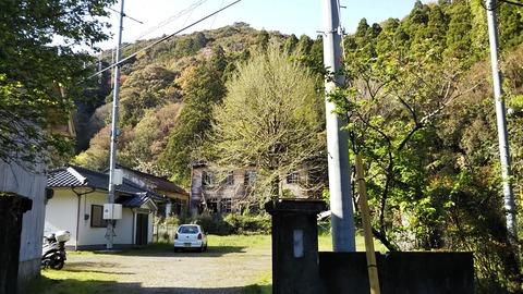 1-1 校門から 桜は散っている