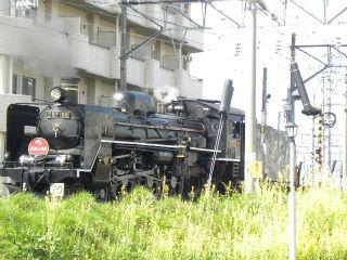 DSCN8039